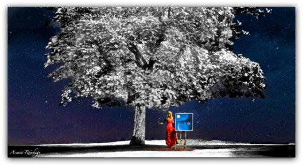 Trädet Fine Art