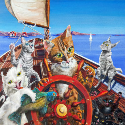 Katter seglar